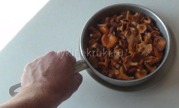 засолка грибов своими руками